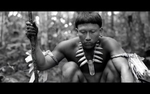 VIDEO: Embrace of the Serpent ttff/17 trailer