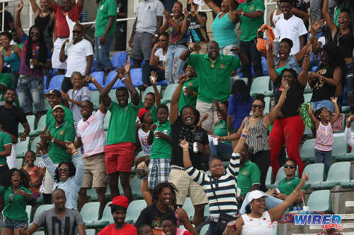 Photo: Guaya United fans celebrate Ryan Stewart's decisive goal against Petrotrin Palo Seco in the 2015 CNG National Super League KO final. (Courtesy Chevaughn Christopher/Wired868)